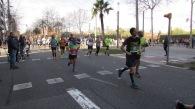 Mitja Barcelon 2019 b (225)
