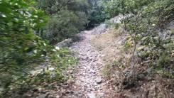 Trail Prades Foto 5