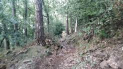 Trail Prades Foto 8