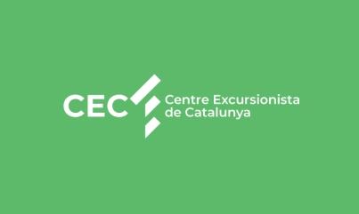 CEC CAT_CABECERA