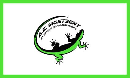 AE MONTSENY_CABECERA