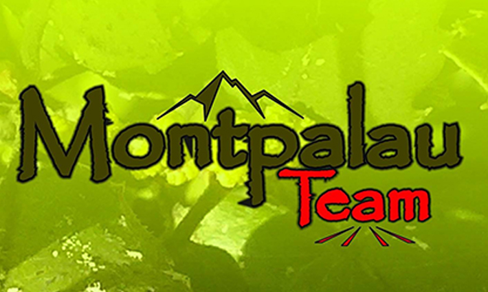 MONTPALAU_CABECERA