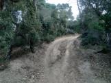 LLORET TRAIL RECORRIDO (51)