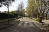 Mitja Pla de l'ESTANY (11)