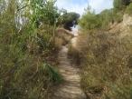 FOTOS REVISION BADA TRAIL 2021 (2)