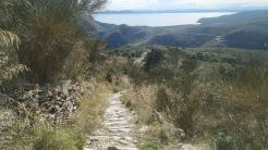 Trail CAP DE CREUS (108)