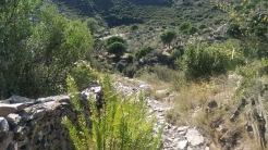 Trail CAP DE CREUS (109)