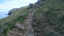 Trail CAP DE CREUS (114)