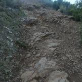 Trail CAP DE CREUS (140)