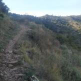 Trail CAP DE CREUS (141)
