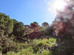 Trail CAP DE CREUS (24)