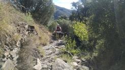 Trail CAP DE CREUS (74)