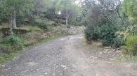 Trail CAP DE CREUS (96)