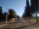 FOTOS MITJA TARREGA (106) copia
