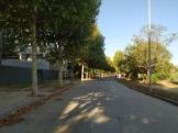FOTOS MITJA TARREGA (114)