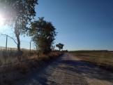FOTOS MITJA TARREGA (90)